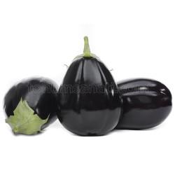 Vezir Patlıcan Tohumu - Thumbnail