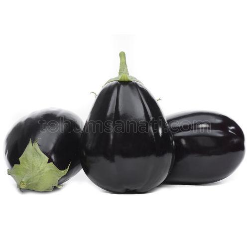 Vezir Patlıcan Tohumu