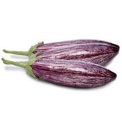 Yüksel Tohum - Kırçıl Patlıcan Tohumu