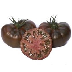 Yüksel Tohum - Çikoköy Domates Tohumu